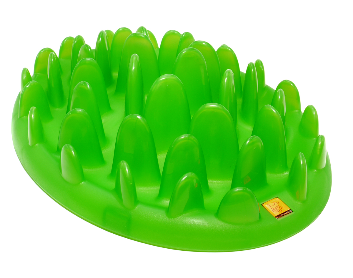 Company of Animals GREEN INTERACTIVE FEEDER-0