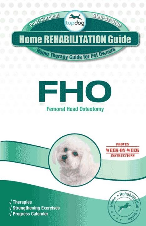 Topdog HOME REHABILITATION GUIDE-198