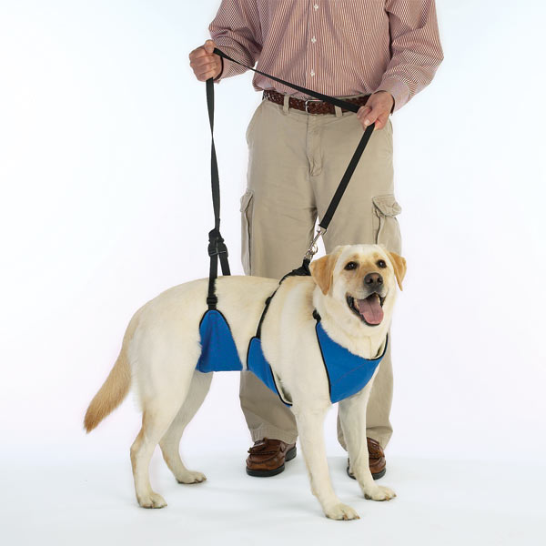 Topdog SUPPORTRx HARNESS-201
