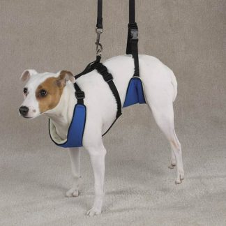 Topdog SUPPORTRx HARNESS-0
