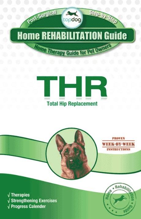 Topdog HOME REHABILITATION GUIDE-199