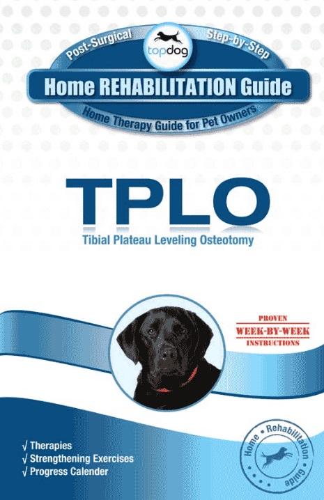 Topdog HOME REHABILITATION GUIDE-194